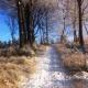 Zimowy g�rski przemarsz